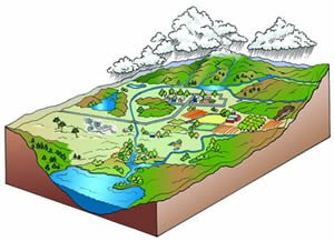 Watershed Defined Illustration
